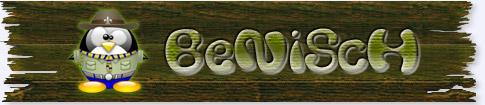 BeniSch-Log01