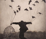bird_birds_caged_bird_flying_string_surreal-417013b51a36689f54783d69901e2224_m