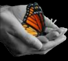 16076-butterfly-hands.png