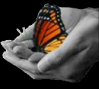 16076-butterfly-hands1.png