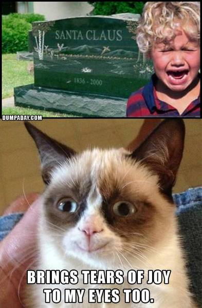 grumpy-cat-christmas-santa-is-dead-what-makes-grumpy-cat-happy-funny-christmas-pictures