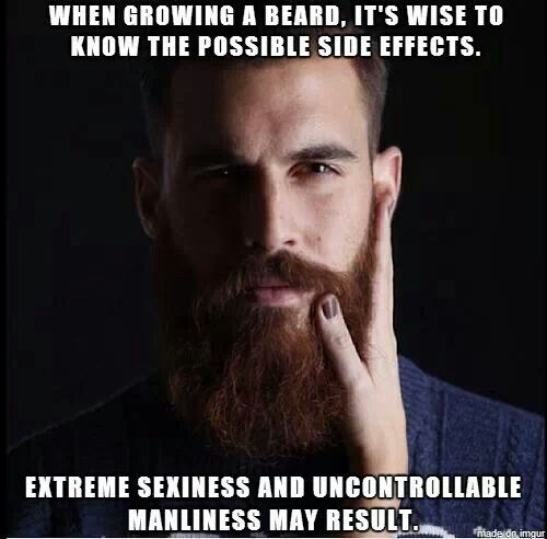 907e80adcc7ac771ef4453fb02aa87ed--beard-quotes-ginger-beard