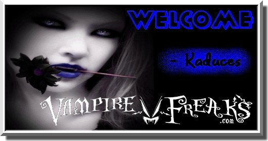 Welcome_to_VF_4b