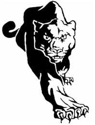 panther8
